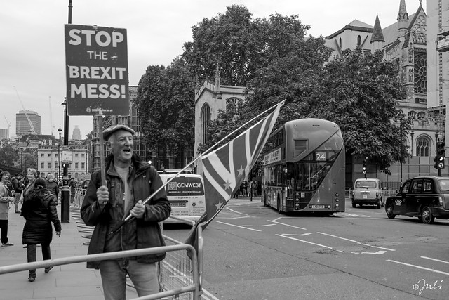 STOP the Brexit Mess