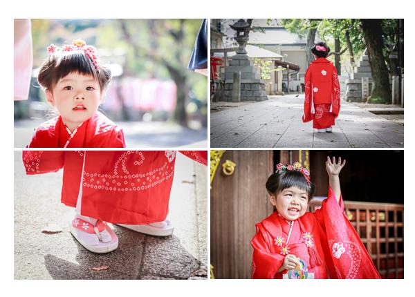 七五三 若宮八幡社(名古屋市中区)) 3歳の女の子 出張撮影