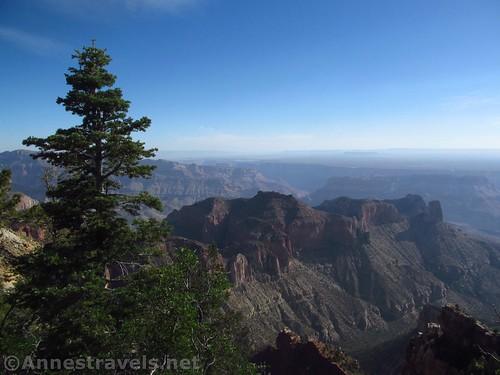 Views from Atoko Point, Grand Canyon National Park, Arizona