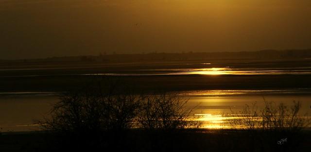 Le Lac du Der nimbé d'or