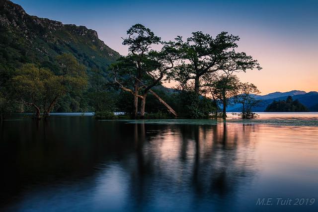 Tree island @ Loch Lomond