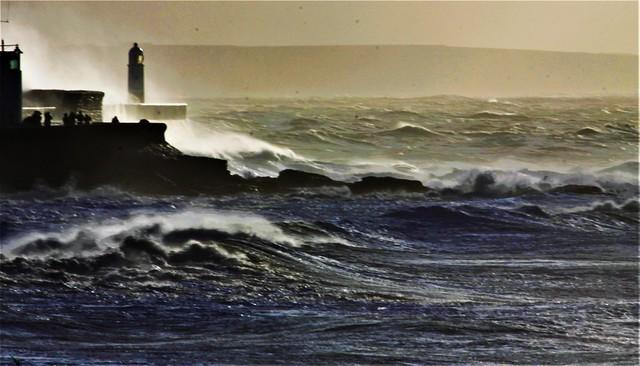 Wild Waves Porthcawl 4