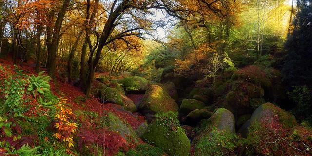 Ambiance automnale en forêt de Huelgoat