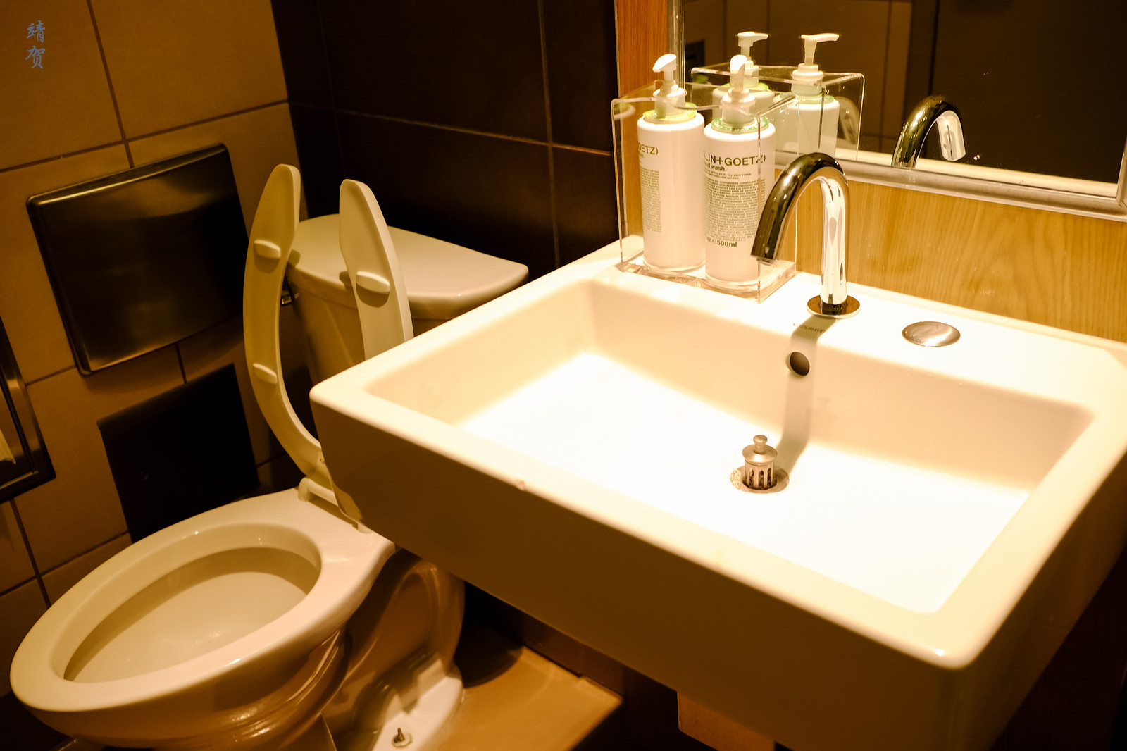 Toilet and washbasin