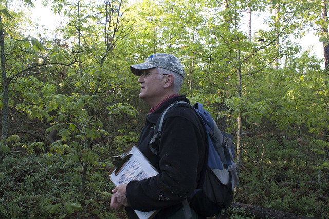 Phil Huber on the Mio Ranger District, Huron-Manistee National Forest, conducting census of singing males