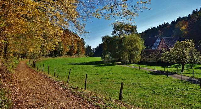 GERMANY, Im Herbst im Siebenmühlental bei Stuttgart, 76798/12092