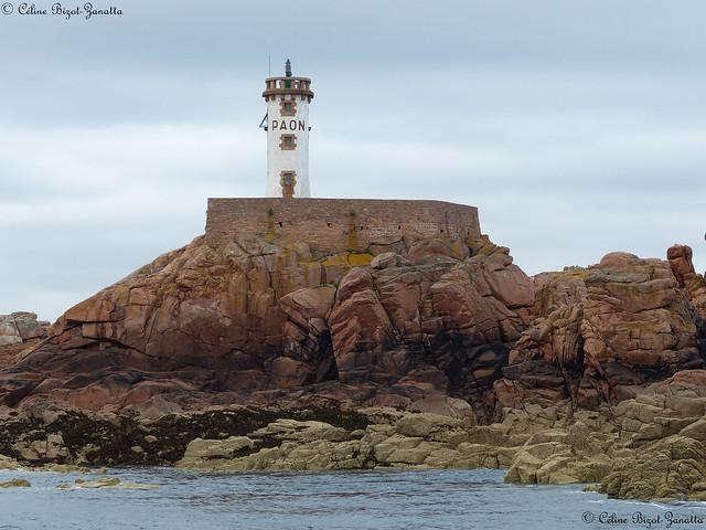 Le phare du Paon Île de Bréhat - Côtes-d'Armor - Bretagne - France - Europe