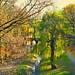 "<p><a href=""https://www.flickr.com/people/162986974@N07/"">k-a-d-a-t-h</a> posted a photo:</p>  <p><a href=""https://www.flickr.com/photos/162986974@N07/49061146196/"" title=""Autumn in Warsaw""><img src=""https://live.staticflickr.com/65535/49061146196_88805af24e_m.jpg"" width=""240"" height=""160"" alt=""Autumn in Warsaw"" /></a></p>  <p>Warsaw - Park Fosa i Stoki Cytadeli</p>"