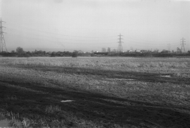 Walthamstow Marshes
