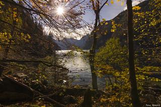 autumn leaves at the Königsee