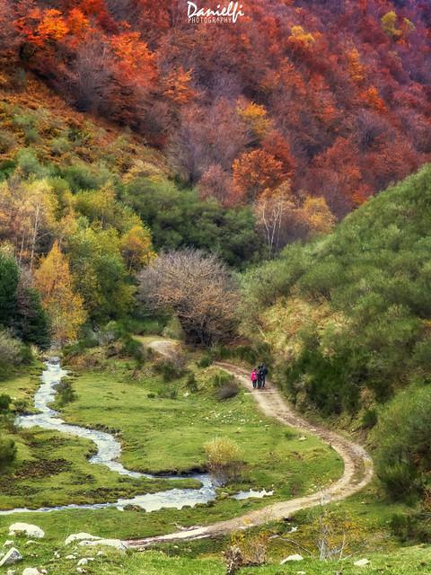 Ruta de otoño - Autumn trail