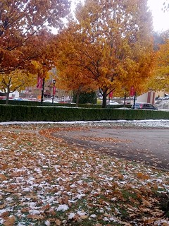 Fall and Winter   UCWV