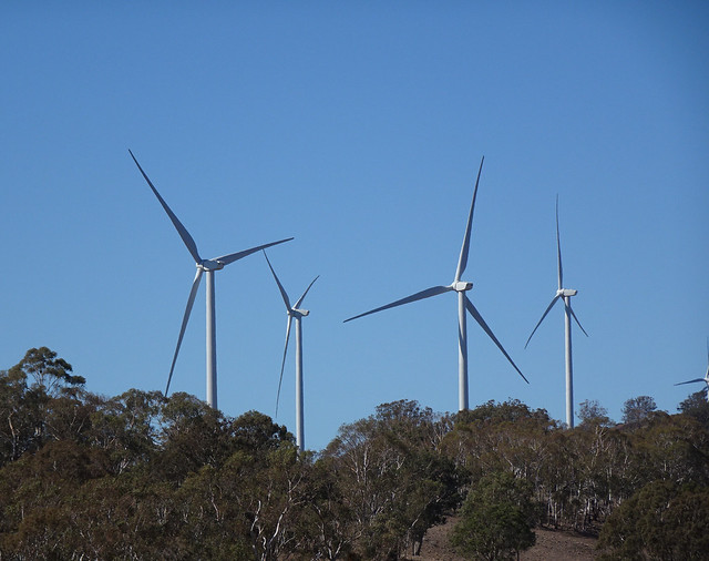 Bush Windmills