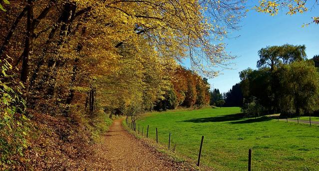 GERMANY, Im Herbst im Siebenmühlental bei Stuttgart, 76800/12094