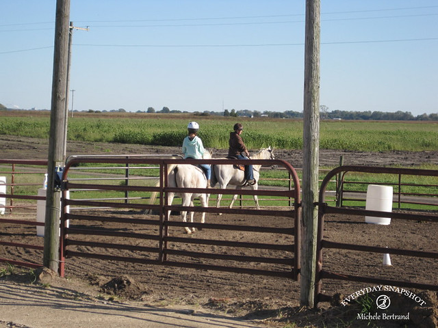 10-14-19 Horse Lessons 002