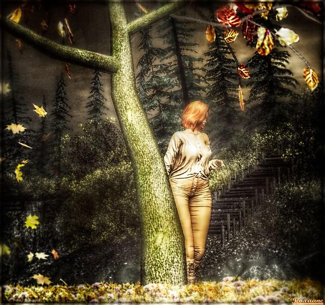 ► ﹌Autumn Tree ... ﹌◄