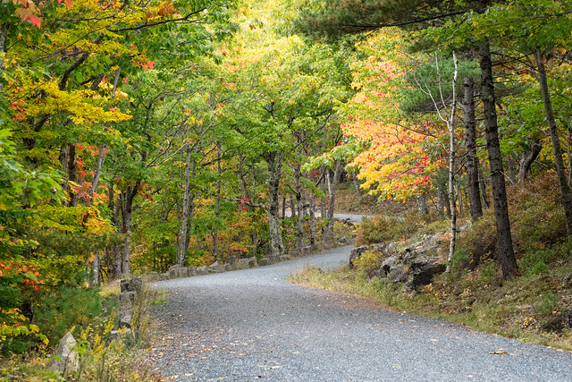 Acadia Carriage Trail