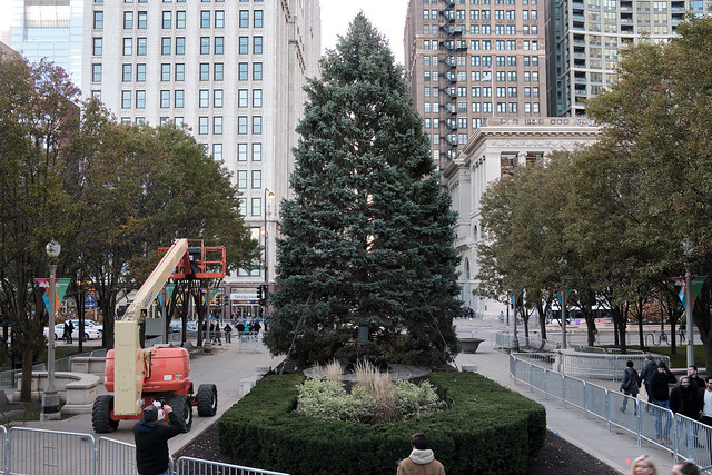 Installing a holiday tree.