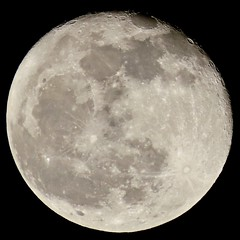 Cloudless Wednesday Evening - November's Waning Gibbous Moon 🌖