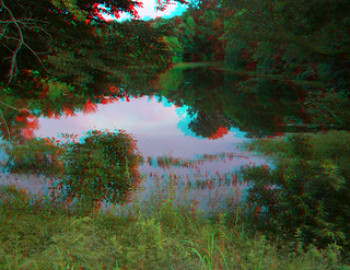 REFLECTIONS OF A POND 3D RED CYAN ANAGYLPH