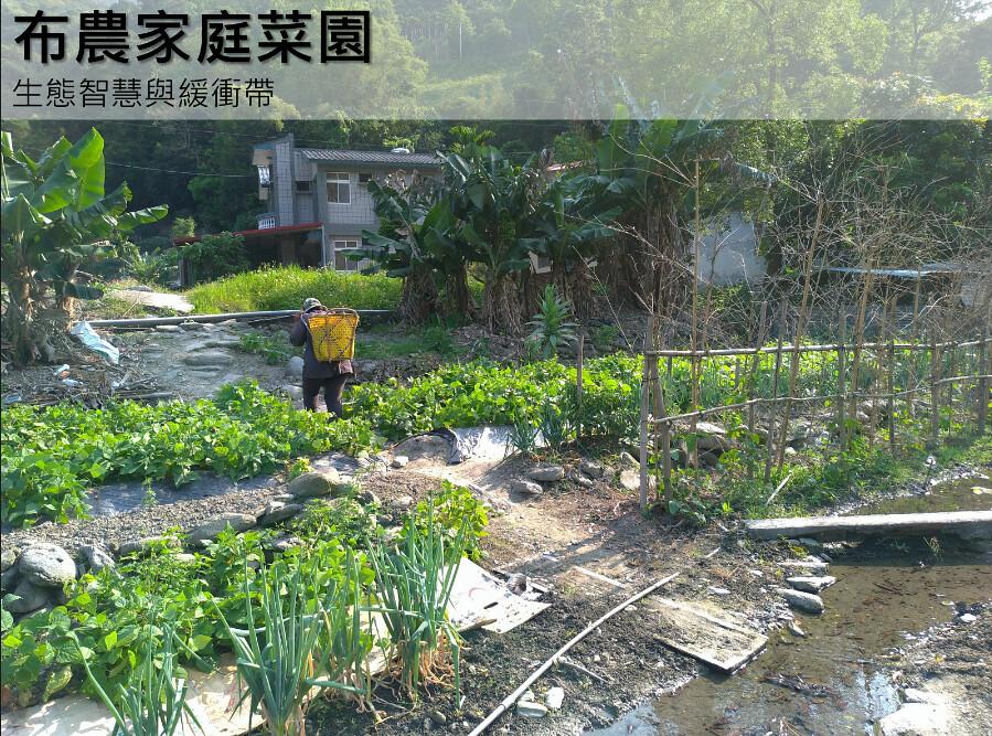 布農家庭菜園