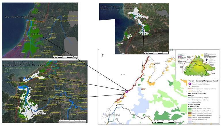 環保團體認為,在沙巴西北部海岸線上,兩車道的道路穿過了生態脆弱的紅樹林區。圖片: 3H聯盟。