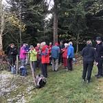2019_11_13_Arnisäge_Fred (29)