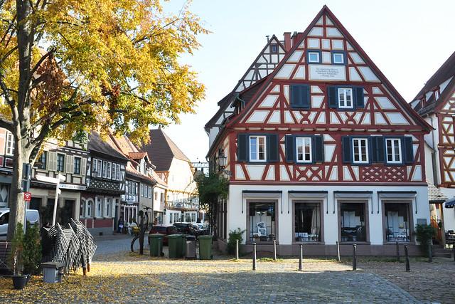 November 2019 ... Ausflug mit dem Oldtimer Ford Mustang ... Schlossgarten Neckarhausen, kleines Frühstück in Ladenburg ... Foto: Brigitte Stolle