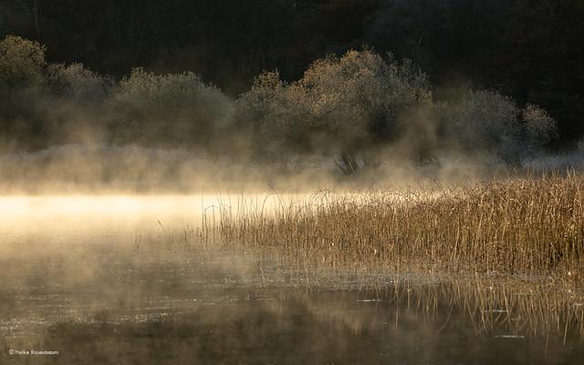 Mist above Elter Water