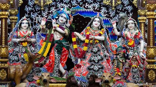 ISKCON Chowpatty Deity Darshan 14 Nov 2019