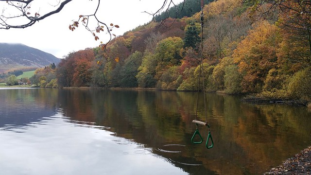 Loweswater Swing