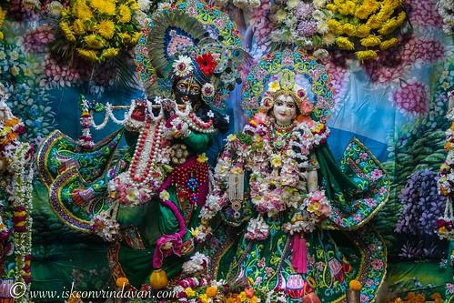 ISKCON Vrindavan Deity Darshan 14 Nov 2019