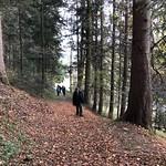 2019_11_13_Arnisäge_Fred (47)