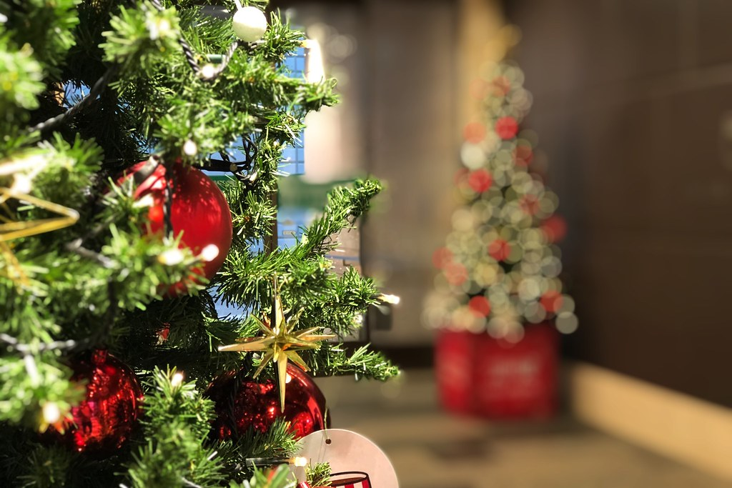 2019/11/13 Christmas tree