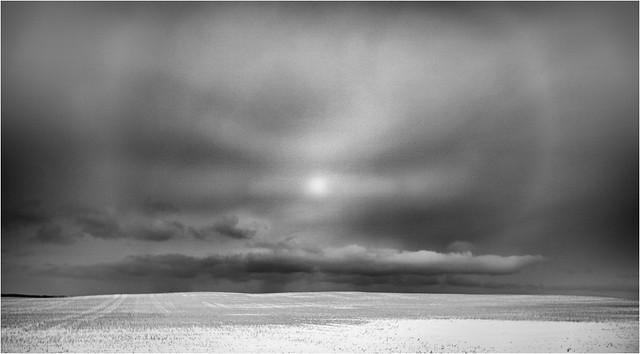 winterLight