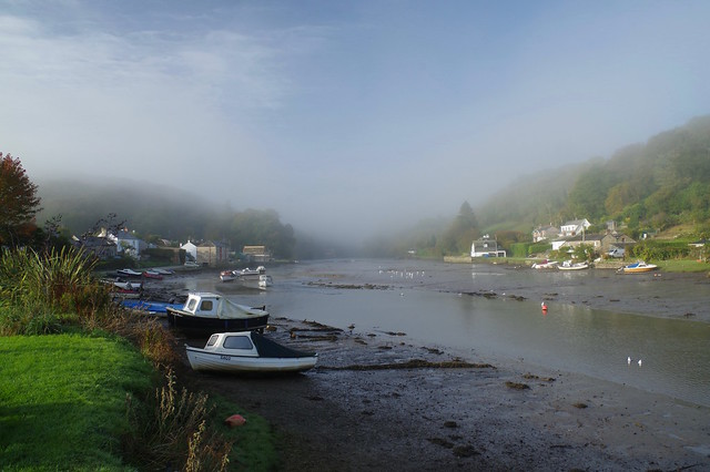 A misty view along the Lerryn River Valley, Cornwall.