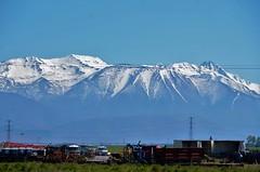 Nueva Zelanda - En ruta - Lago Pukaki