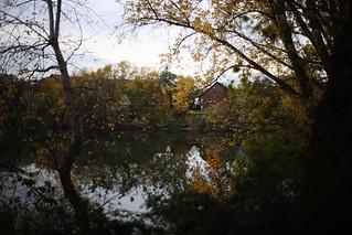 late autumn@walking path