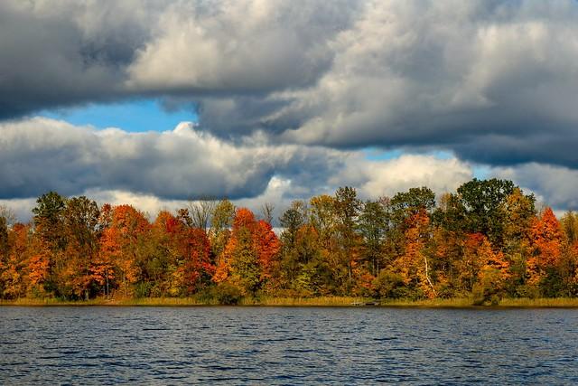Lithuanian autumn 🍁🍂