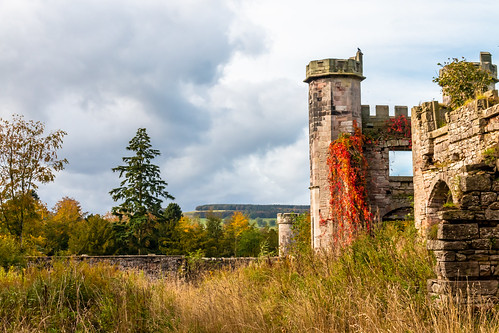 lowther castle tower ruins stone wall bird climber virginiacreeper garden wildness tree landscape sky cumbria england hdr building architecture