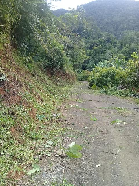 Mantenimiento en Pakishiari