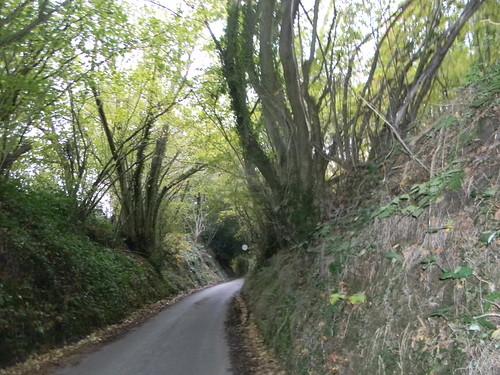 Groombridge Lane