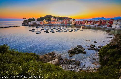 italy italia sestri levante sun sunset town sea water blue yellow orange color colors colour colours history seaside