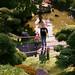 "<p><a href=""https://www.flickr.com/people/arterialspray/"">arterial spray</a> posted a photo:</p>  <p><a href=""https://www.flickr.com/photos/arterialspray/49066597937/"" title=""10.14.19""><img src=""https://live.staticflickr.com/65535/49066597937_97e4ba73f6_m.jpg"" width=""240"" height=""159"" alt=""10.14.19"" /></a></p>  <p><a href=""http://www.dalliswillard.com"" rel=""noreferrer nofollow"">www.dalliswillard.com</a></p>"