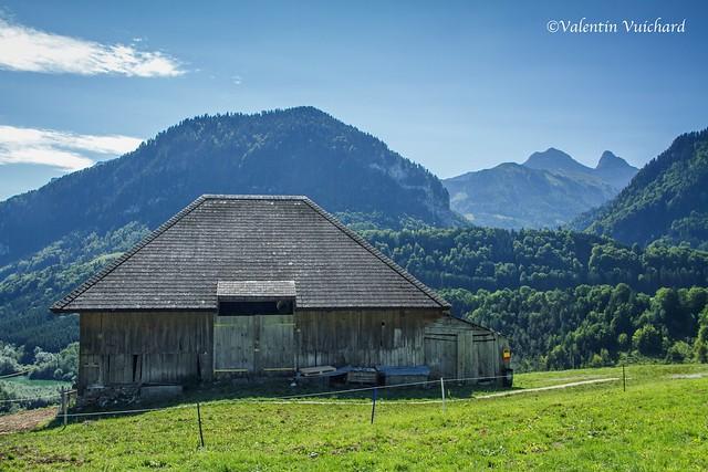 SF-_MG_3131 - La Savignière, alpine pasture farm, Gruyère region - Switzerland