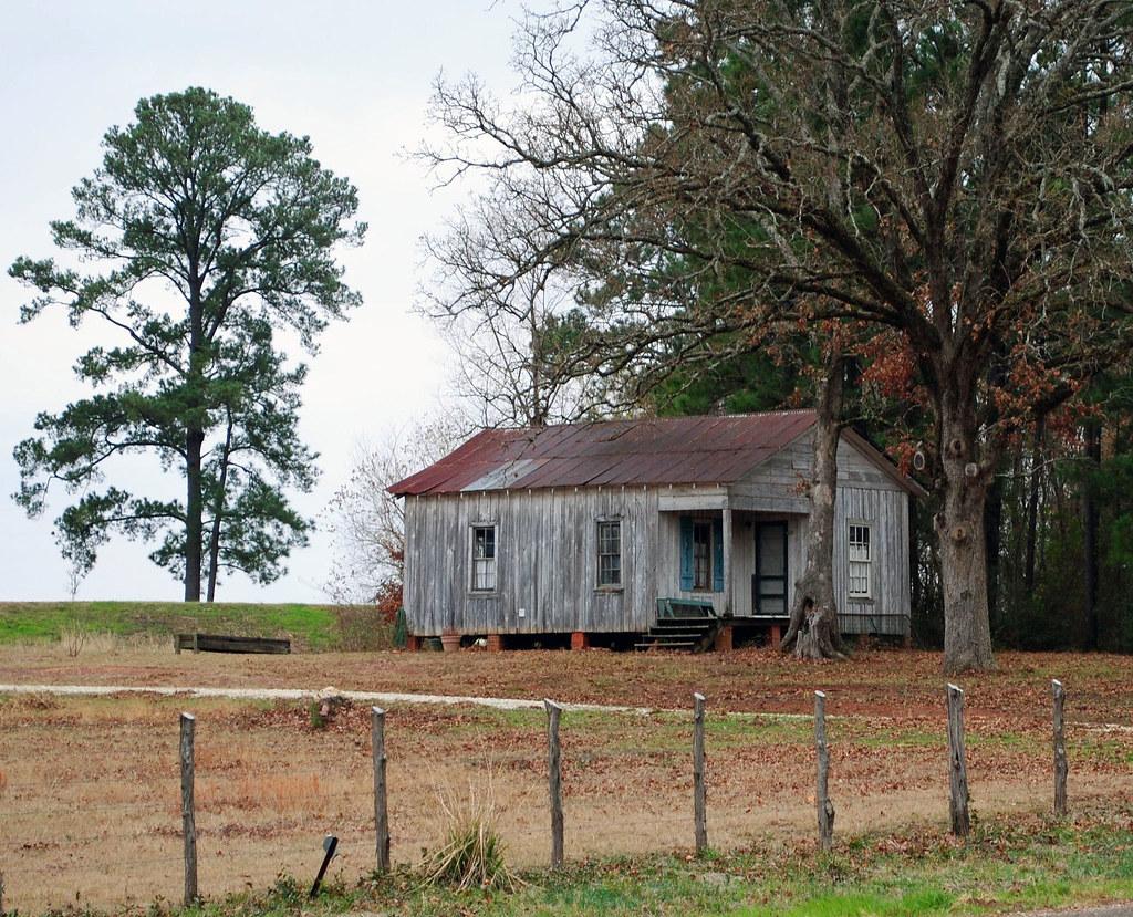 Still Alive - Houston County, Texas