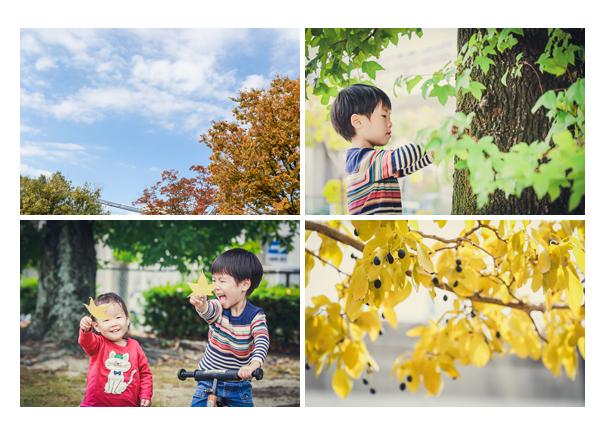秋の公園 遊ぶ子供達