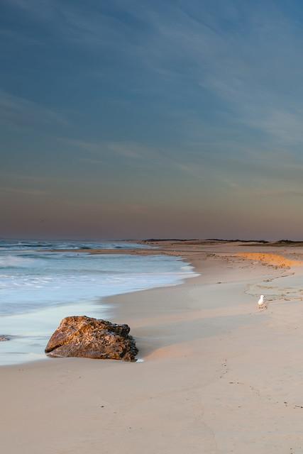 Clear Skies Beach Sunrise Seascape