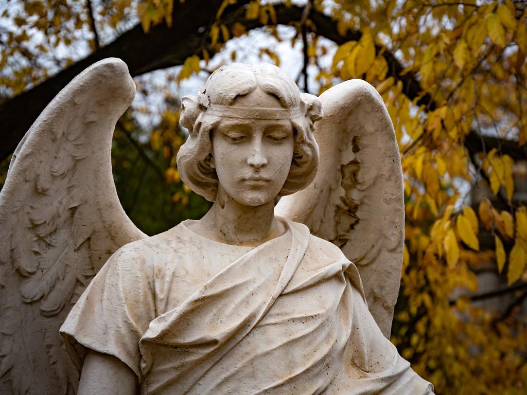 """L'Ange de l""""Automne... 49067763926_f5a312711b_b"""