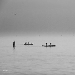 Venice, rowing in the fog